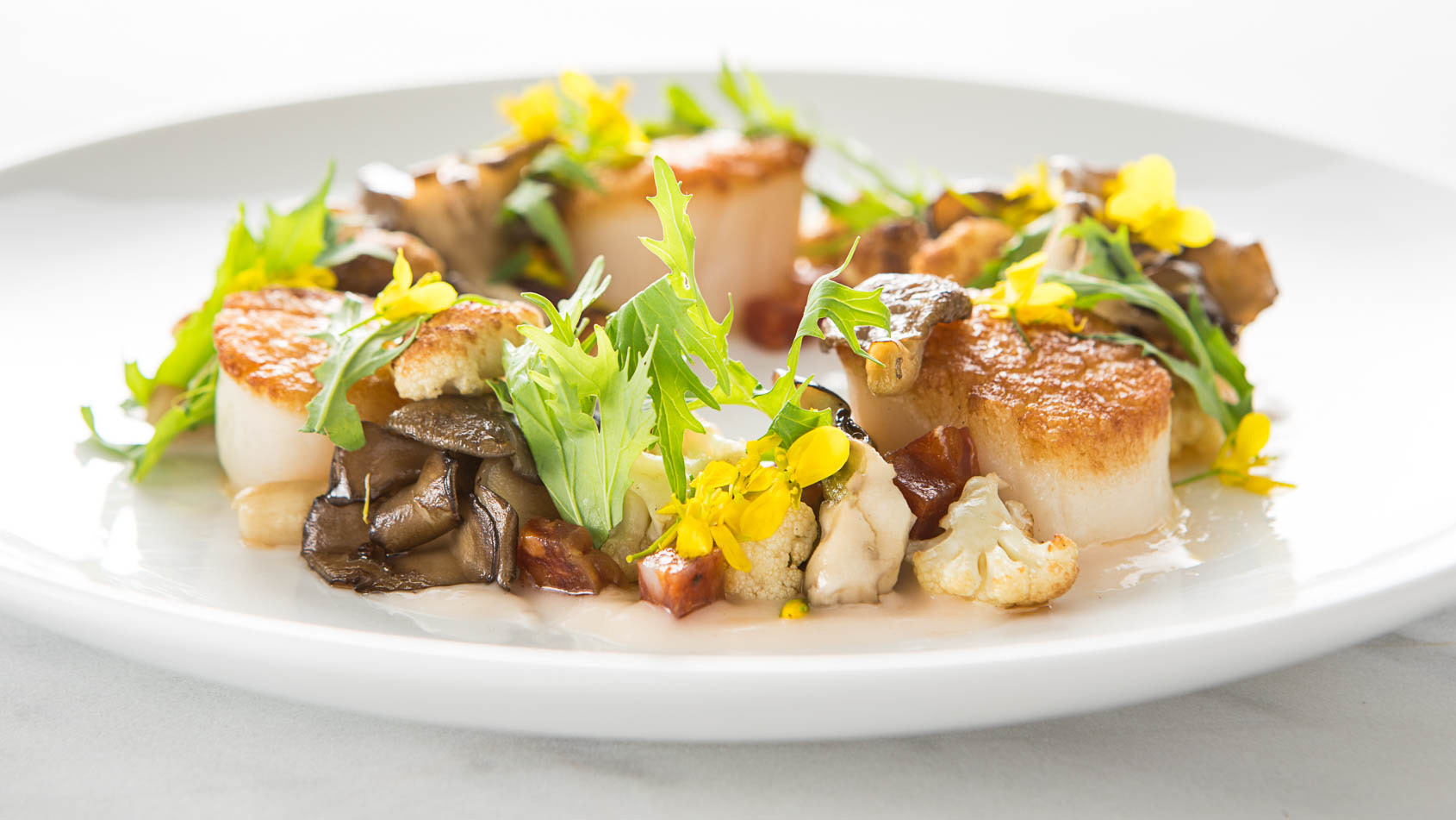 Scallops_mushrooms_greens